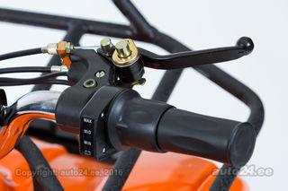 Apollo Elektri ATV 800W 36V