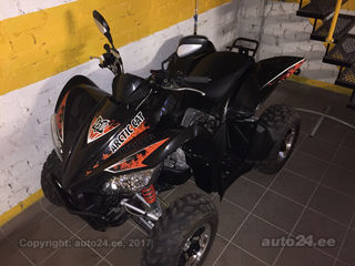 Arctic Cat 450 15kW